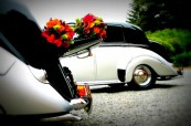 adelaide wedding cars rental 8
